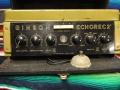 Binson Echorec 2 T7E 6 knops Black Plexi front 1962 met toonregeling. Laatste 6 knops buizenmodel met originele footswitch. Knoppen niet origineel. Als transistor vanaf 1971.