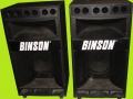 "Binson PA 2 way speakerboxen   CA400.  400 watt RMS, 50 Kohm, 18""Bass woofer,  high gain horn, 6 ceramische Motorola tweeters."