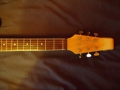 Burns Baldwin Jazz Split Sound 6 string 1965, headstock front.