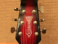 Burns Baldwin Vibra Slim 6 string in Redburst, 1965, headstock front.