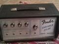 Fender Echo Variable Delay, met Adineko Oil Can techniek van Tel-Ray.