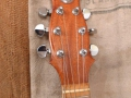 Hayman 2020 6 string 1970, headstock.