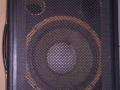 Echolette Hercules 102, bas-orgel speakerbox 50 watt 1978, 1x12 inch + hoorn, 8 ohm.
