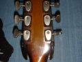 Burns GB66 DeLuxe 1965, headstock back.