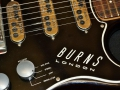 Burns Jazz Split Sound 1962, Split Sound pickups.