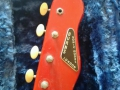 Burns Tri Sonic 1960, headstock front.