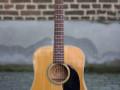 Vega Alpha 690 acoustic 1972  Martin label, front.