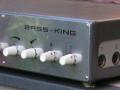 Dynacord Bass-King Silver buizen model 4 1964, zijkant.