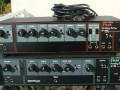 Evans analoge delay AE-205 en AE-205-R met toegevoegde Spring Reverb, front.