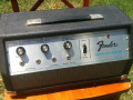 Fender Echo Reverb  III, met Adineko Oil Can techniek van Tel Ray Los Angeles, front.