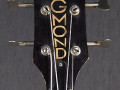 Colorado Bass 2EBS1, 2 pickups, headstock front.