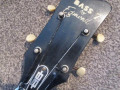 Flash versie Solid Bass 7, 2EBS1 met halspen 1966, 2 pickups, headstock front.