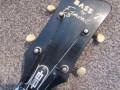 Flash versie Solid Bass 7, 2EBS1 met halspen 1966, 2 pickups, headstock front.
