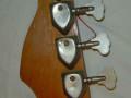 Typhoon B2V Bass 2EBS1, Vinyl bekleding body 1967, Bass 2 pickups,  headstock back met ingeslagen serienummer.