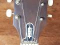 Gipsy M1 acoustische jazzgitaar naturel, bonkonko blad, Varifort hals, headstock front.