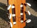 .Estrada klassieke gitaar no 3-1970 -1980,  headstock back.