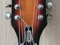Orpheum semi-acoustic Archtop 12-string 1967, headstock front.