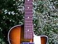 Orpheum Jazz gitaar, front.
