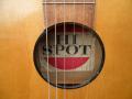 Hi Spot Parlour guitar UK Toledo export model. Voor Egmond geproduceerd in Tsjechoslowakije, label in klankkast.