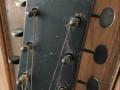 Combo acoustisch, headstock front.