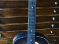 Combo acoustische Jazz gitaar, made by Egmond.