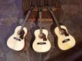 Conga Folk en Pueblo  6 en 12 string Jumbo uit de Lion serie.  Allen met Varifort hals, Spruce blad en Mahogany neck, sides en back.