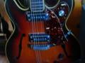 Lion semi acoustische 101-2 guitar, 2 Luxtone elementen en tremolo TK3, Actiomatic neck, body front met  complete turtle slagplaat.