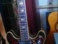 Lion semi acoustische 101-2 guitar, 2 Luxtone elementen en tremolo TK3, Actiomatic neck, front met complete turtle slagplaat.