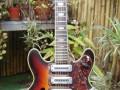 Lion semi acoustische 101-3 guitar,  3 Luxtone elementen,  TK3 tremolo en Actiomatic neck met smalle kop,  front. Tremolo handel mist.