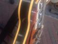 Lion semi acoustische 102-3-guitar 1970 Sunburst, 3 Luxtone elementen en TK4 tremolo met brede arm, Actiomatic neck met brede kop, zijkant.
