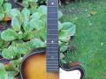 Dixieland Vintage acoustische jazz gitaar, Egmond JG113 CA model, front.