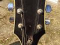 The Moltar Organ gitaar 1968, gebouwd door Jan Mol gitarist van The Ramblers en Jaap van Egmond,  headstock front.