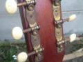 Tonica Spaanse gitaar made by Egmond, headstock back.