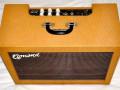 Egmond  V1230 12 watt  buizenversterker 1965,  formaat 55x41x25 cm, top.