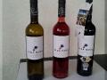 Deel van de collectie Vida Nova wijnen uit de Portugese wijngaarden van Sir Cliff Richard.