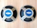 Stel Fane 122-12 12 inch 20 watt 15 Ohm Alnico Toegepast in 2e T60 Bass cabinet.