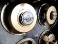Oxford 10 inch Golden Bulldog 16 ohm Ceramic speakers, als gebruikt in Scorpion V116.