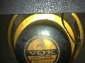 Oxford (Chicago) Golden Buldog Alnico 10 inch als gebruikt in de 1965-1970 US Pacemaker en Cambridge modellen.