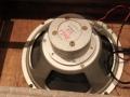 Rola G12 B024 Alnico 12 inch speaker 8 ohm zoals gebruikt in eerste generatie Vox AC15 en AC30 versterkers.