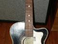 Framez Capinera acoustic jazz gitaar 1956, front.