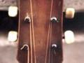 Framez Sport Jazz gitaar 1958, headstock front.
