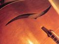 Framez Sport Jazz gitaar 1958, klankgat.