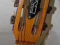 Meazzi Miss P.1 classic semi acoustic gitaar 1964, headstock front.