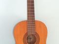 Jester CL030 acoustic als Alfesta, front.