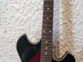 Dynelectron semi acoustic gitaar 2 pickups, front.