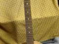 Framez Meazzi 6 snarige banjo 1968, front.