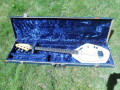 V210 Phantom IV Bass 1962-1963 White, 2 pickups  UK model, in originele koffer.