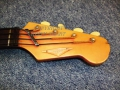 Burns Nu-Sonic Bass 1964, headstock front copyright.