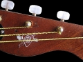 Burns Vibra-Artist DeLuxe Bass 1961, headstock front.