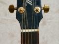 Headstock Maton Tommy Emanuel model TE89 zwart.